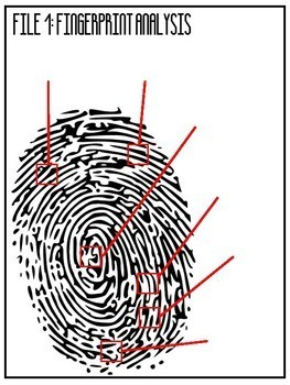 Drawing Conclusions Fingerprint Analysis