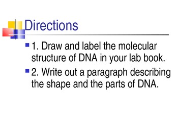 Drawing DNA Molecule Presentation & Project