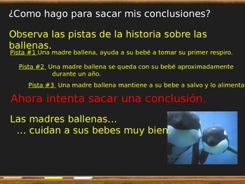 Drawing conclusions - Haciendo conclusiones Espanol