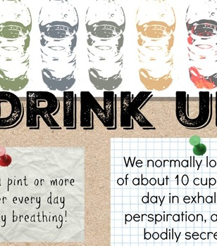 Drink Up- Hydration Information