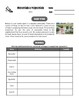 Drive Instruction - Monomials & Polynomials - EDITABLE Slides, Notes & Tests+++