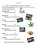 Drug Webquest