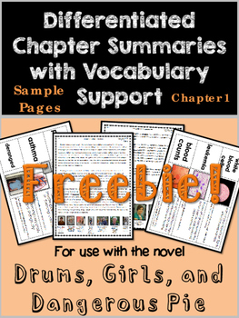 Drums, Girls, and Dangerous Pie Differentiated Chapter Summary & Vocab {Ch. 1}