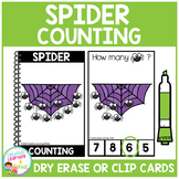Dry Erase Counting Book/Cards or Clip Cards: Halloween Spiders