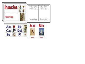 Dual Language Alphabets