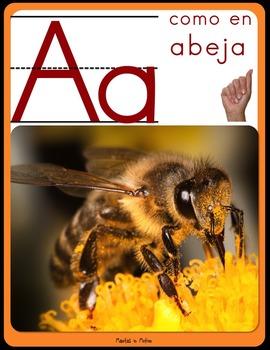Dual Language - Classroom Alphabet Spanish version (with photographs)