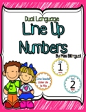 Dual Language Line Up Number Circles in English & Spanish