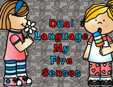Dual Language My Five Senses Writing and Cut and Paste Activities