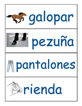 Dual Language Rodeo Vocabulary/Great for Students with Dyslexia