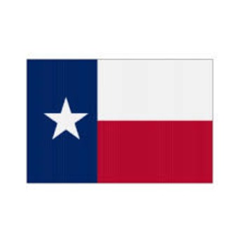 Dual Language - Texas State Symbol Cards BILINGUAL