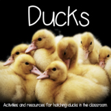 Duck Hatching Resource and Activity Packet