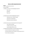 Duck on a Bike Comprehension Test