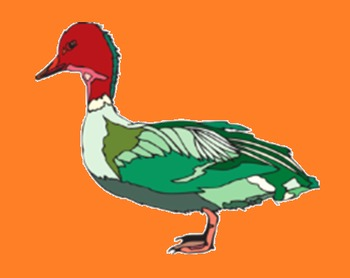 BIOLOGY, ARTS: Ducks, Mallards, Geese And Swans Public Domain Clipart