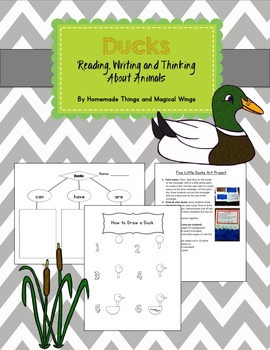 Ducks: Reading, Writing and Thinking about Animals