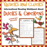 Ducks and Chickens Webquest - Fun Informational Reading Research Activity