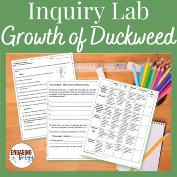 Duckweed Student-Led Lab Investigation