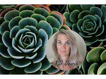 Dudleyas succulent