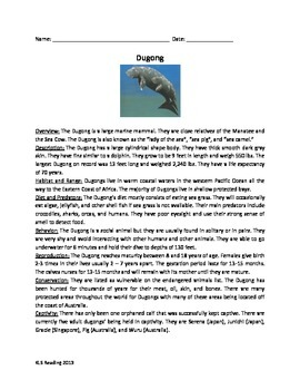 Dugong - Marine Mammal - Review Article Facts Info Questions Vocabulary