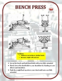 Exercise Task Cards: Dumbbell Exercises