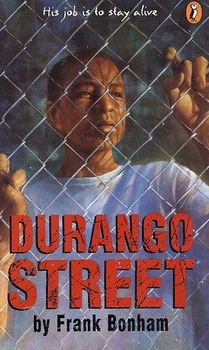 Durango Street Curriculum
