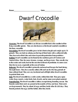 Dwarf Crocodile - lesson facts information smallest crocodile - questions review