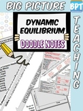 Dynamic Equilibrium Activity Worksheet Doodle Notes