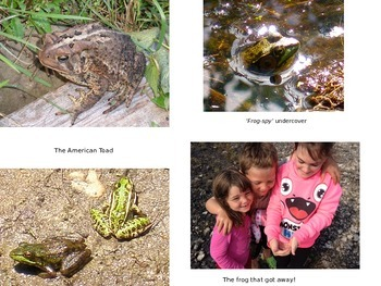 """Earth Day E-Book: """"Busy In Pond City"""" 46 pages"""