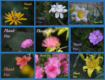 E-Cards - Floral Set - Thank You