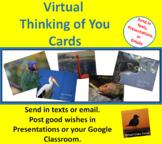 E-Cards - Zoo Set - Thinking of You