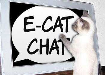 E-Cat Chat - A chat room by cats, and for anyone