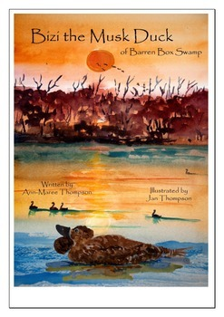 Sustainability: a true wetland success story: eBook plus activities