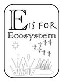 E is for Ecosystem- Alphabet and Vocabulary Coloring Pages