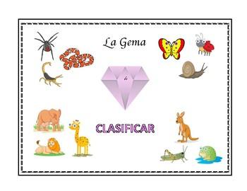 E1 Clasificar (Juego de tarjetas)