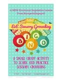 E2E Single Sensory Grounding BINGO