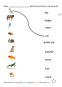 EAL /ESL Pets and their Homes