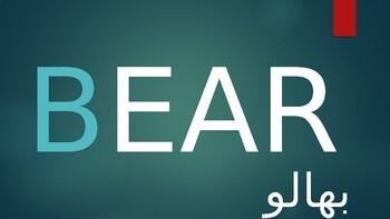 EAR words flashcards with Urdu translation