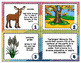 EARTH'S BIOMES CARD SORT, VOCABULARY ACTIVITY, WORD WALL