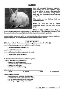 EASTER - Lesson 2 of 10 - Grades 5&6