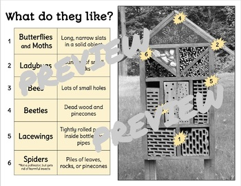 ECO-CONSCIOUS STEM ACTIVITY: BUG HOTEL