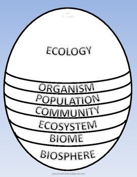 ECOLOGY Levels of Organization Stacked Foldable Cut and Paste Def.Posters