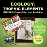 ECOLOGY: TROPHIC ELEMENTS PowerPoint and Foldable