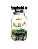 ECOSYSTEM IN-A-JAR PROJECT . . . SALE . . . $8.50  AN EXCE