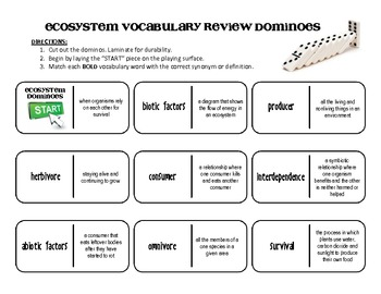 ecosystem vocabulary dominoes review science terms by iteachstem. Black Bedroom Furniture Sets. Home Design Ideas
