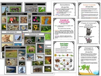ECOSYSTEMS BUNDLE - Includes food chain/webs, types of animals, and more...