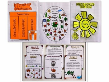 ECOSYSTEMS Interactive Notebook - Food Chains/Webs/Pyramids, Types of Animals...