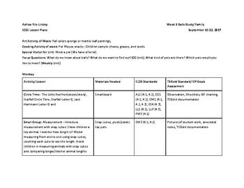 ECSE Lesson Plans - Creative Curriculum Balls Study (Week 1)/Pets