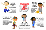 EDIBLE INSECTS EDUCATIONAL POSTER (Color)