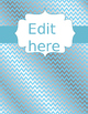 EDITABLE Binder Covers and Spines---Sky Silver Themed