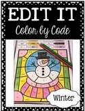 EDITABLE Color by Code: Winter (FREEBIE Sample!)