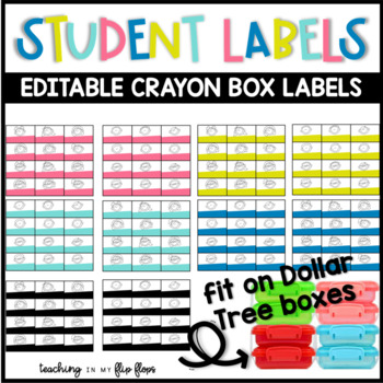 EDITABLE Dollar Tree Student Labels